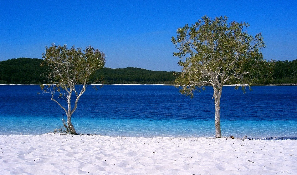 Swimming at Lake McKenzie, Fraser Island