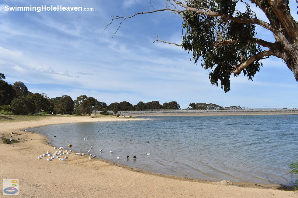 A beach at Lysterfield Lake