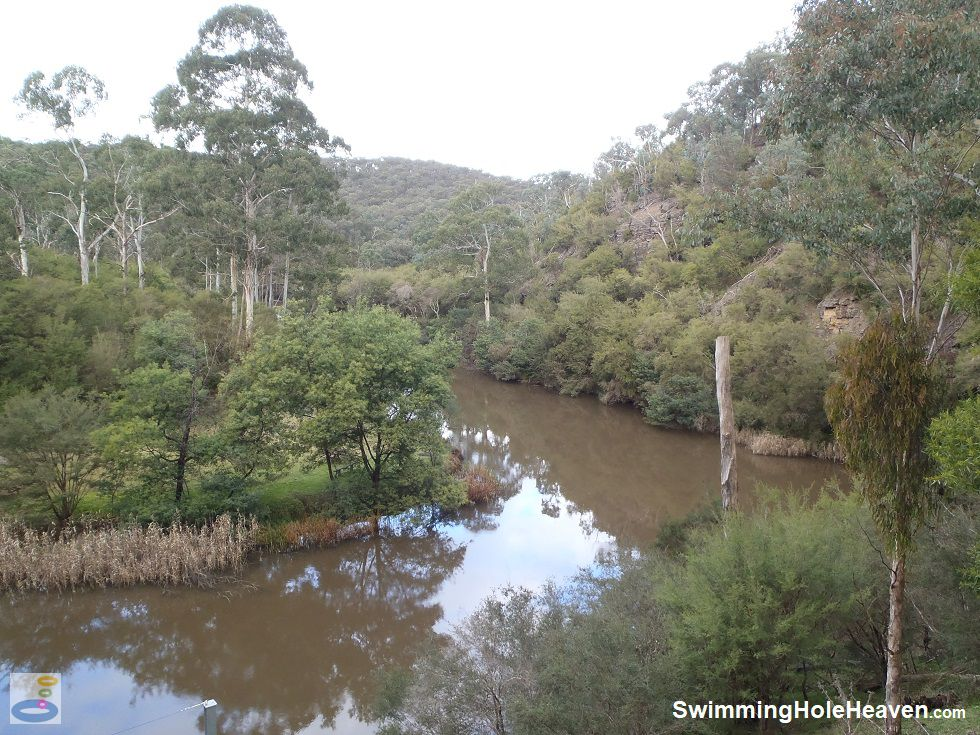 The muddy, slow moving waters of the Yarra River between Kangaroo Ground and Yarra Glen