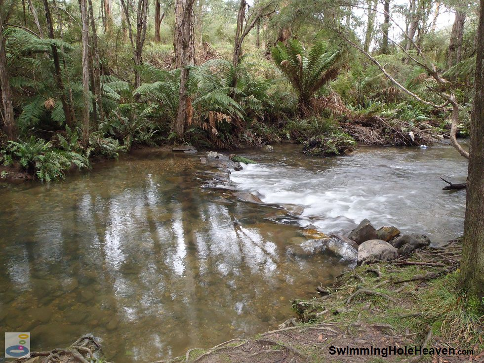 A shallow pool in the Yarra River downstream of Upper Yarra Reservoir