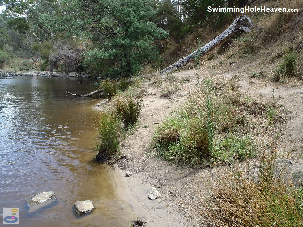 Swimming in the Yarra River at Laughing Waters