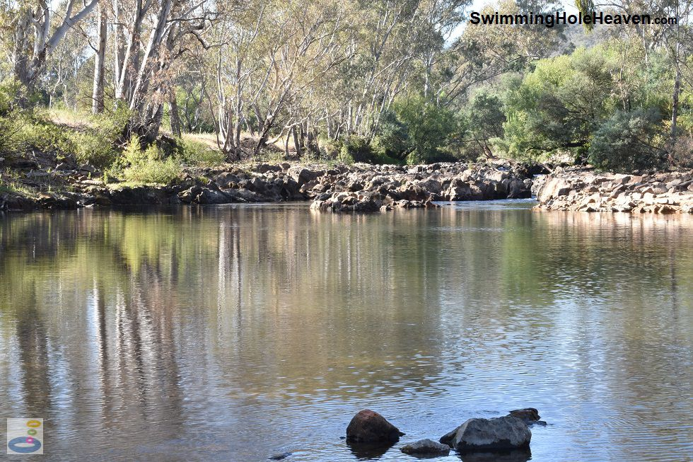 Swimming in the Ovens River at Nimmo Bridge
